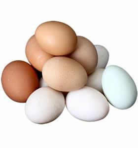 dogal-yumurta