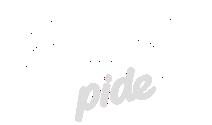 yerindepide-new-logo